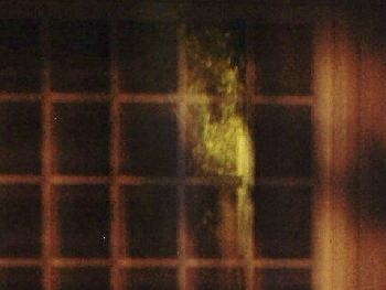 Investigations - The Crescent Hotel Women Apparition